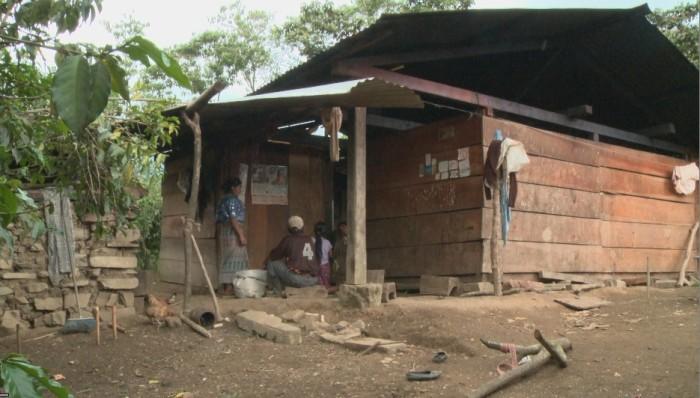 Seb's House